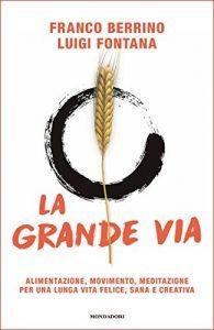 Libro La grande via di Luigi Fontana PDF